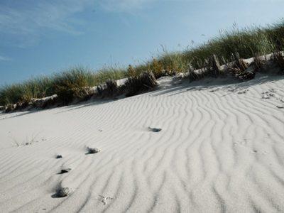 individual-tom-abraham-sandfalten