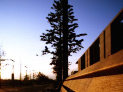 individual-tom-abraham-solarbanque